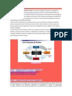 Analisis Porter de Cinco Fuerzas