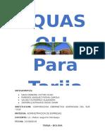 PROGRAMA LLUVIA SOLIDA CCA.docx
