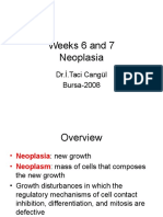 Weeks6and7 Neoplasia
