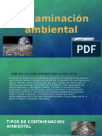 CONTAMINACION AMBIENTAL DIAPO