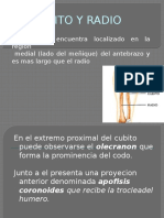 cubitoyradio-121006132120-phpapp02
