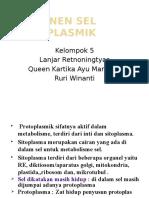 Komponen Sel Protoplasmik