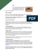 O que é a Dengue