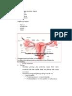 Anatomi Organ Reproduksi Wanita
