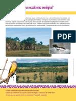 Sistema Ecológico.pdf