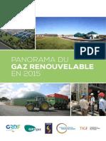 Panorama Du Gaz Renouvelable en 2015