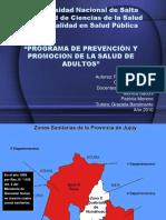 Programa de Prevención y Promocion de La Salud de Adultos