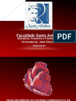 seminrioanatefisio-140128220349-phpapp02.pptx
