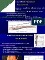 Patologie venoasa.ppt