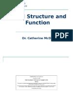renalstructureandfunctionI_s2c11