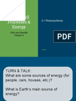 unit 3- cell processes   energy
