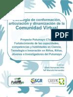 Estrategia Conformacion Comunidad Virtual