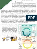 FICHA Fermentación - 4to Sec.doc