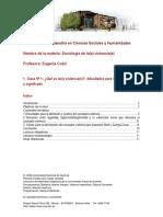 Programa Sociologia de La s Violencia s Eugenia Cozzi