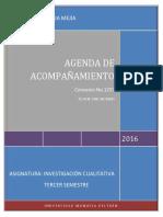 Agenda de Acompañamiento Investigación Cualitativa