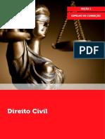 Direito Civil Espelho Correcao Secao 1