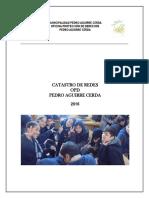 Catastro Redes 2016 Pedro Aguirre Cerda