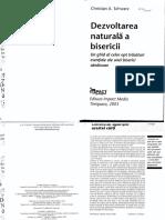 Schwarz - Dezvoltarea Naturala a Bisercii