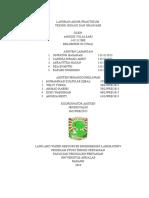 Laporan Akhir Teknik Irigasi dan Drainase