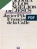 pikaza, javier - teologia de los evangelios de jesus.pdf