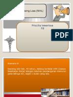 prisil-ske8-blk 28 INHL.pptx