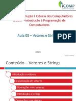Aula05 - Vetores e Strings_prox_periodo.pdf
