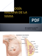 Presentacion CA Mama