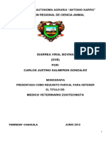 Carlos Justino Salmeron Gonzalez