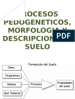Procesos pedogeneticos.pptx