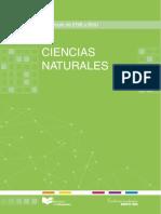 CCNN-completo.pdf