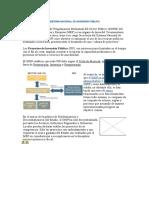 La Dirección General de Programación Multianual Del Sector P