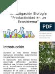 Investigación Biología
