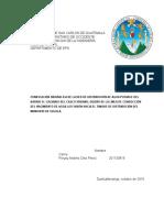 Informe Final del Diagnostico de Red Hidráulica Solola