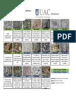 Texturas Rocas Igneas (1)
