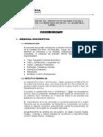 Estudio Definitivo Del Proyecto de Mejoramiento de La Carretera