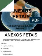 ANEXOS FETAIS
