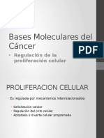 Bases Moleculares Cancer