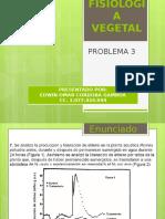 Fisiologia Vegetal Problema 3