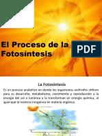 La Fotosìntesis