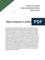 Proiect La Economie SOMAJUL in BACAU