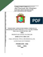 TESIS PERCEPCIONES Y APRECIACIONES.doc