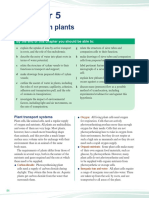 transport in plants.pdf