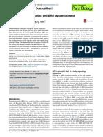 10. Brassinosteroid signaling and BRI1 dynamics went underground.pdf