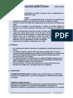 Layered Audit Procedure