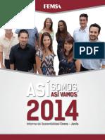 Informe Sost Ene-jun2014