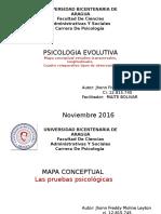 Psicometria Mapa Conceptual. 2016
