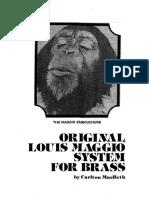 Maggio-System.pdf