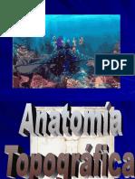 POSICIONES-ANATOMICAS-ABOGADOS