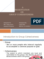 Groupcohesiveness 121104075558 Phpapp01 2