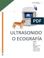 Ultrasonido y Ecografia